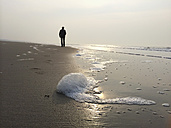 Belgium, Flanders, woman hiking at the North Sea beach, seaweed foam by algal bloom in the spring (non-toxic, harmless, natural phenomenon) - GWF002734