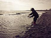 Ruegen, Baltic Sea, Mecklenburg-Vorpommern, Island, winter, Beach, sea - MJF001081