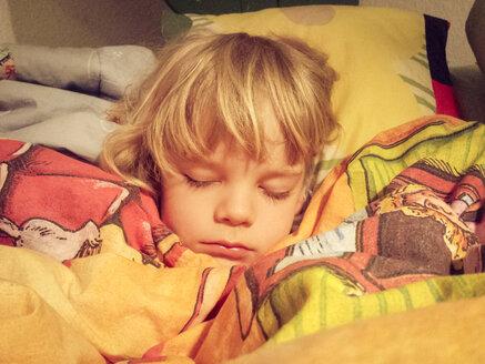 Child, boy, business, child's room, bed - MJF000997