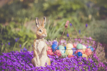 Easter bunny in garden with flowers - MJF000964