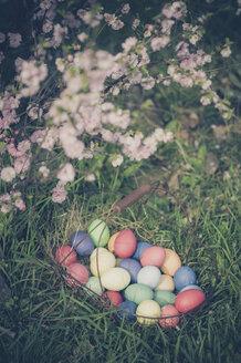Easter basket in garden - MJF000972