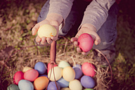 Boy in garden holding Easter eggs - MJF000982