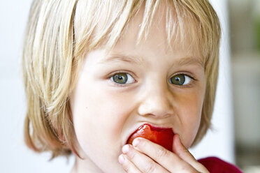 Portrait of little girl eating tomato - JFEF000409