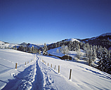 Germany, Bavaria, Upper Bavaria, Manfall Mountains, near Bayrischzell, Sudelfeld - SIEF005329