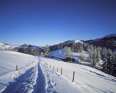 Germany, Bavaria, Upper Bavaria, Manfall Mountains, near Bayrischzell, Sudelfeld - SIEF005329