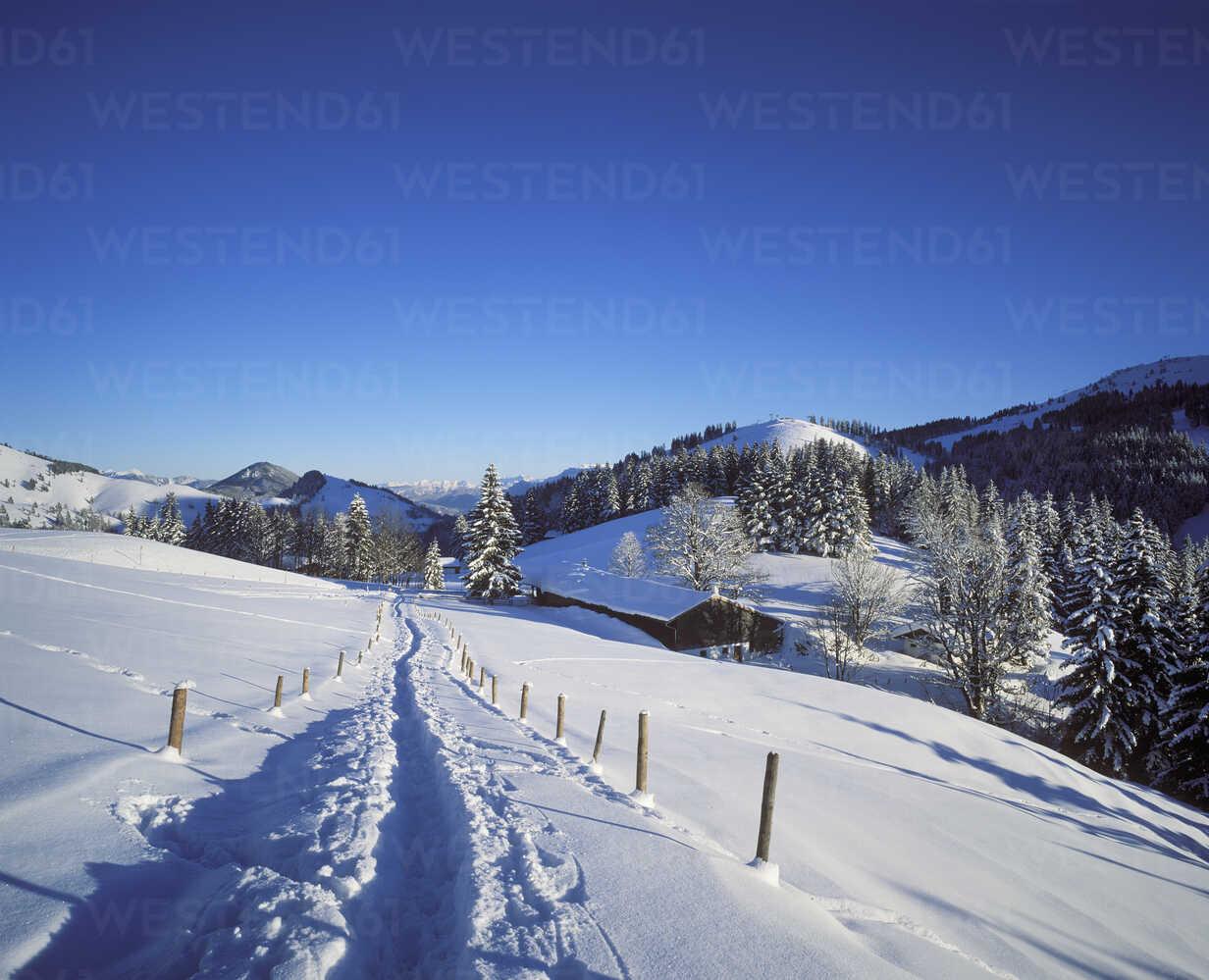 Germany, Bavaria, Upper Bavaria, Manfall Mountains, near Bayrischzell, Sudelfeld - SIEF005329 - Martin Siepmann/Westend61