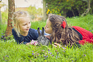 Two little girls with rabbit lying on meadow - MJF001107