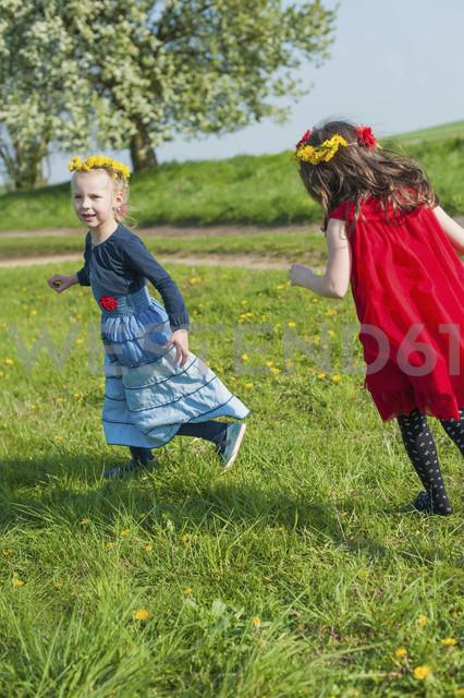 Two little girls running on a meadow - MJF001122 - Jana Mänz/Westend61
