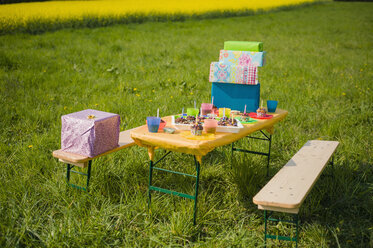 Table of children's birthday party - MJF001151