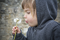 Portrait of little girl blowing blowball - LVF001149
