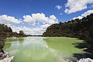 New Zealand, Rotorua, Wai-O-Tapu Thermal Wonderland, Lake Ngakoro with Mt Tarawera in background - GW002840