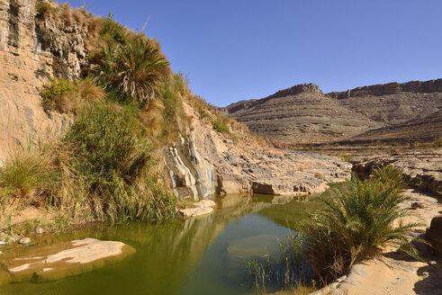 Algeria, Tassili N'Ajjer National Park, Iherir, Water in a guelta at Idaran Canyon - ES001044