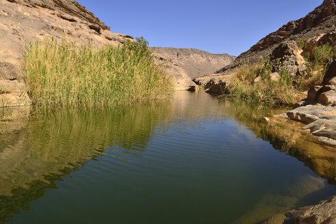 Algeria, Tassili N'Ajjer National Park, Iherir, Water in a guelta at Idaran Canyon - ES001047