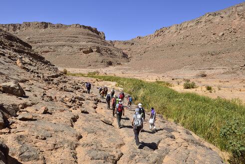 Algeria, Sahara, Tassili N'Ajjer National Park, Iherir, Group of people hiking in Idaran Canyon - ES001051