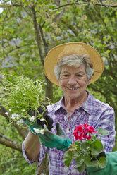 Senior woman gardening - AKF000385