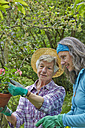 Senior mother and daughter gardening - AKF000384