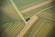 Germany, Rhineland-Palatinate, Eifel, aerial view of fields landscape - PAF000628