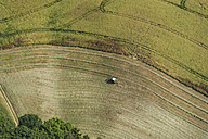 Germany, Rhineland-Palatinate, Eifel, tractor on field - PAF000636