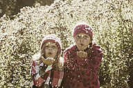 Two girls blowing seeds from shrub - HHF004801