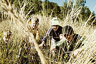 Four boys in high grass - HHF004800