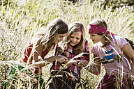 Three girls exploring the nature - HHF004817