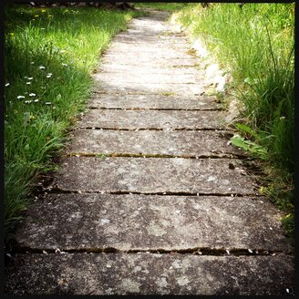 Concrete walkway bordered by tall grass, Germany - SRSF000465
