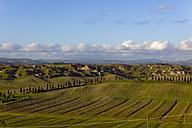 Italy, Tuscany, Province of Siena, Crete Senesi, Landscape - KLRF000051