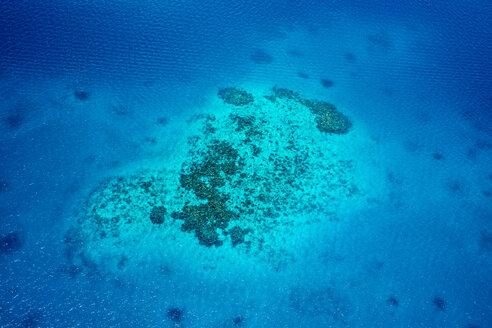 Oceania, Palau, Pacific Ocean, Coral reef - JWAF000047