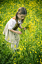 Little girl wearing country style dress collecting buttercups, Ranunculus on meadow - SARF000597
