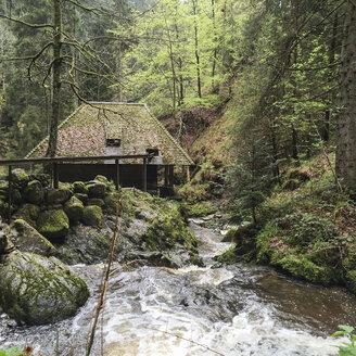 Old water mill, Ravennaschlucht, Breisgau-Hochschwarzwald, Germany - DRF000685