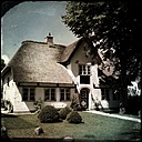 Germany, North Frisia, Foehr, Nieblum, thatched cottage in the village Nieblum - MMO000193