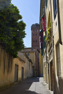 Italy, Tuscany, Province of Lucca, Lucca, Old town, Guinigi Tower - YFF000136