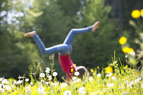 Teenage girl doing handstand on a flower meadow - WWF003304