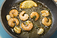 Fried shrimps in a pan - CSTF000333