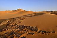 Africa, Algeria, Sahara, Tassili N'Ajjer National Park, Tadrart, rocks and sanddunes at Oued In Djerane - ES001121