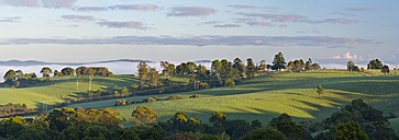 Australia, New South Wales, Dorrigo at first morning light - SHF001294