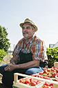 Germany, Hesse, Lampertheim, portrait of senior farmer with pallet of strawberries - UUF000604