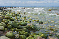 Germany, Mecklenburg-Western Pomerania, Ruegen, Stone coast - MJF001270