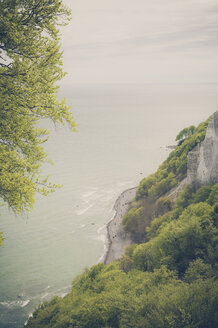 Germany, Mecklenburg-Western Pomerania, Ruegen, Jasmund National Park, Chalk coast at Koenigsstuhl - MJF001241
