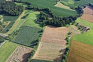 Austria, Styria, Hartberg, Stubenberg, Fields - GFF000502