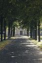 Germany, North Rhine-Westphalia, Alley at benedictine abbey St Joseph at Gerleve near Billerbeck - MEMF000023