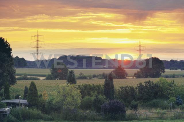 Germany, North Rhine-Westphalia, Fields near Werne - MEMF000135