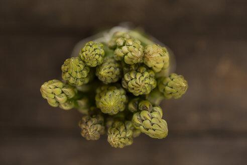 Green asparagus, Asparagus spears, close-up - STB000181