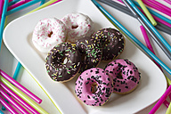 Plate of six decorated doughnuts - YFF000147