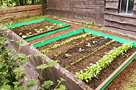Garden with mixed vegetable patch and slug fence - ONF000569