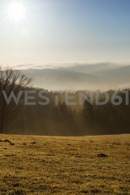 Germany, North Rhine-Westphalia, Bergisches Land, landscape at morning mist - ONF000581