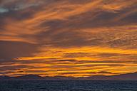 France, Provence Alpes Cote d'Azur, Var, Giens peninsula, sunset - JBF000104