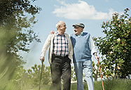 Two old friends walking in the park - UUF000685