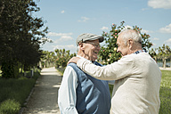 Two happy old men standing face to face in the park - UUF000693