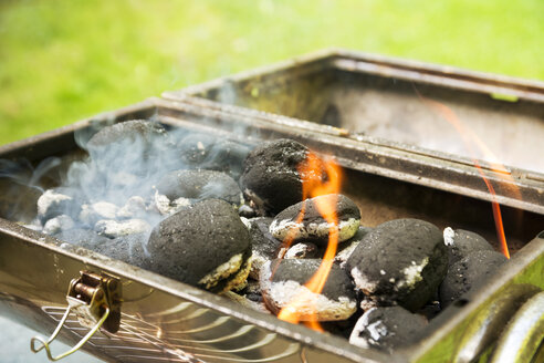 Burning coal briquets on grill in garden - ONF000590